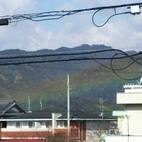 ホタル・雪・虹