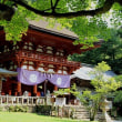 慈尊院と丹生官省符神社と丹生都比売神社