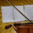 桜のつぶやき  レコーディングにヴァイオリン