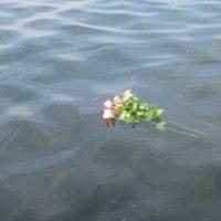 カルマ解消➉の花を流しました&夕焼け