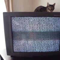 7月とともにテレビが逝く。