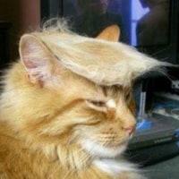 予言されていたトランプ大統領。
