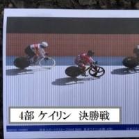 日本スポーツマスターズ 2016 自転車競技