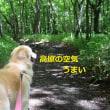 清里旅行・滝を見に行こう