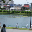 暑さしのぎには川風が・・・ 戸田公園:埼玉県戸田市