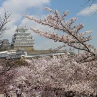 姫路で悲鳴 2