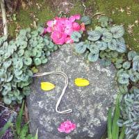 モアイの美人石像