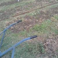 2回目の草刈り