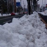 よく降りました・・・しばらく雪は、いらないわぁ~