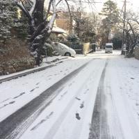 雪道の散歩
