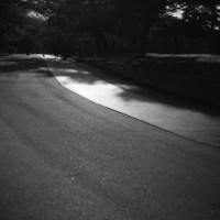 夕方の散歩