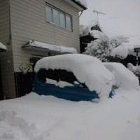 味宿きぬや 現在の雪