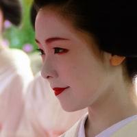 赤襟の清ちゃんと、三毛猫のたま (6)