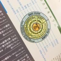 バウハウスのカリキュラム概略図  英訳 日本語訳