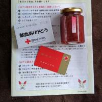 献血(75回目)
