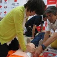 2016年 赤十字キャンペーンが終了しました。