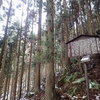 妙徳山1294m