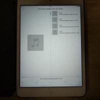 iPad mini 2 で「FileExplore」を使い、Windows Server 2012 に保存してある FLAC 音楽ファイルを直接再生できました。