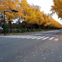 横浜・山下公園近辺散策