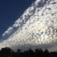 秋の雲は高く輝く・・・