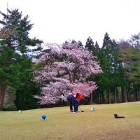 今期初ゴルフ