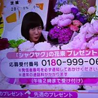 5/29・・めざましお花プレゼント本日2時まで