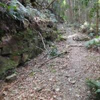 熊野古道 大辺路(富田坂)散策