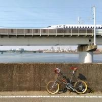 大阪城梅林ポタリング