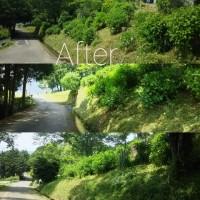 環境ボランティア活動、「花の郷」で草刈り活動です。