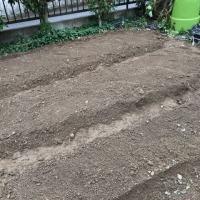 畑を耕しました。