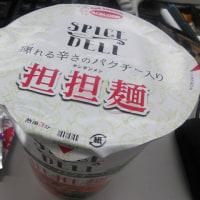 ◆エースコック スパイスデリ パクチー入り担担麺