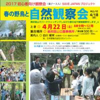 春の野鳥と自然観察会・奥卯辰山 4/22