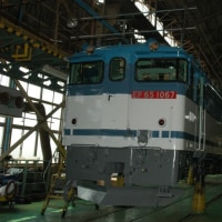 Electric Locomotive#203