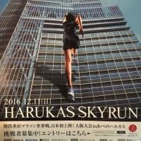 ハルカススカイラン(階段垂直マラソン)