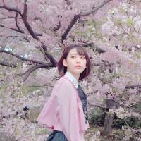 2017年4月8日・4月9日 関西春の撮影記 その2