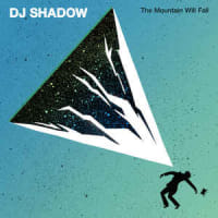 DJ Shadow -The Mountain Will Fall 2016年作 冬期賞与支給まであと12日ですね(^▽^)