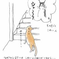 セ〜フ!!