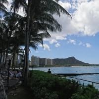 ハワイ ホノルル旅行(8)