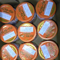 日本ルナ バニラヨーグルト有田みかんを食べてみました~☆
