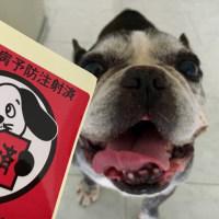 狂犬病予防接種へ