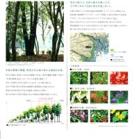 『大手町の森』