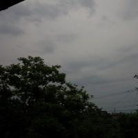 弱い雨が長時間降り続けている。