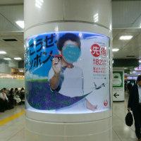 東京駅、JAL先得の大野くん