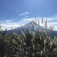 富士山原始林トレイルラン無事完走の感想っ♪