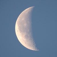 17/03/22  久しぶりに今朝のお月様  月齢23日目