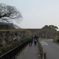 はじめまして、名古屋城。