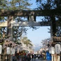 みちのくの春2017 ~ 花見日和の松ヶ岬公園 ~