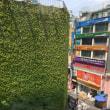 ソウル市内の究極のエコビル