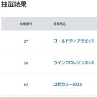 今年の愛馬選び ~2015年産出資確定~