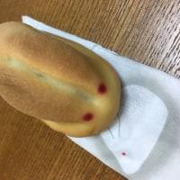 帰途〜17年5月三江線旅行記その18